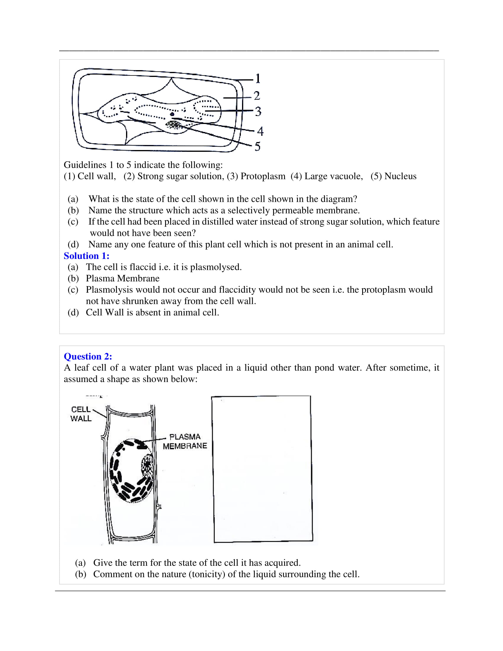 physical biology of the cell solutions manual pdf